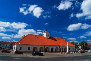 Staszowski Ratusz