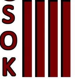 Program kulturalny SOK 2016 w Staszowie 7-20 marca